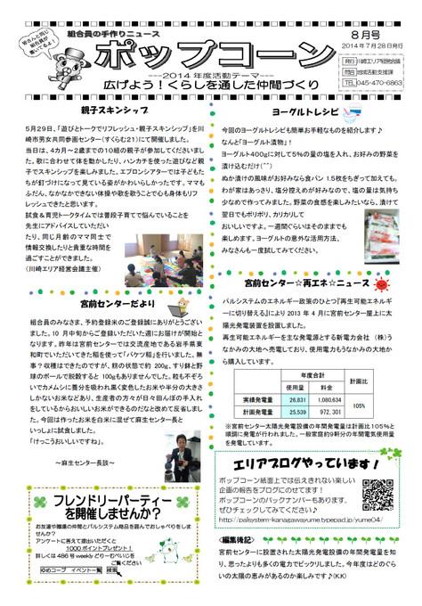 489kawasaki
