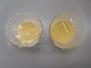 Eggstudymeeting201605272